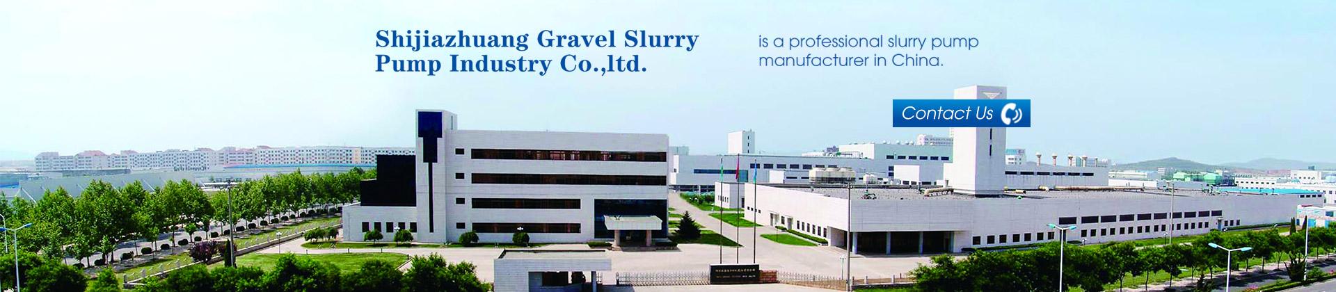 professional pump manufacturer